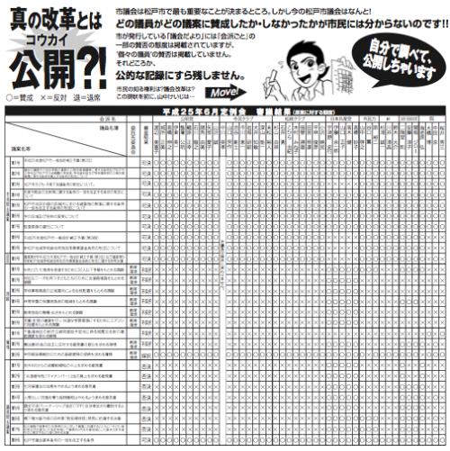 H25年6月 松戸議会:個人の議案等の賛否態度について